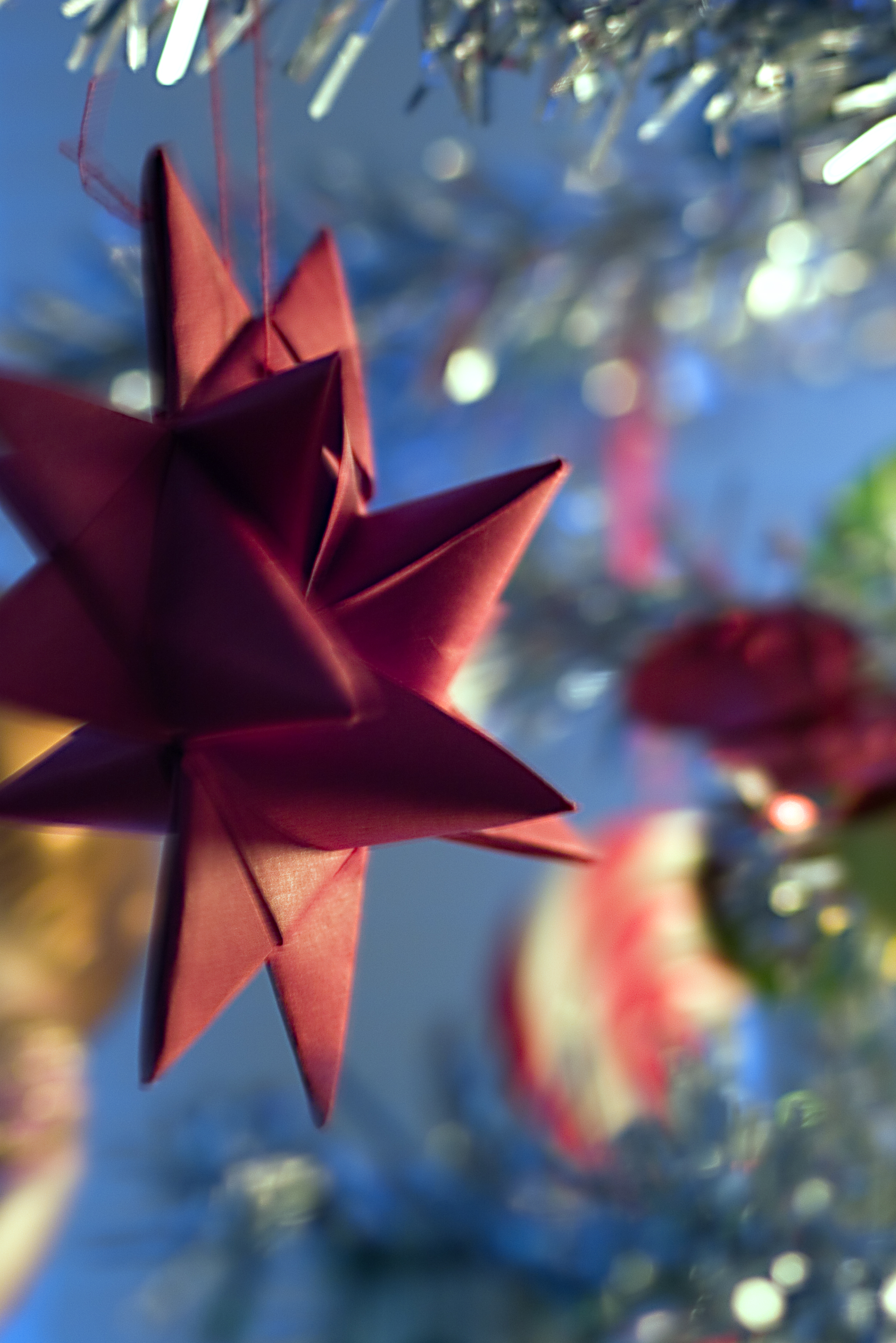 Froebel star - Wikipedia, the free encyclopedia