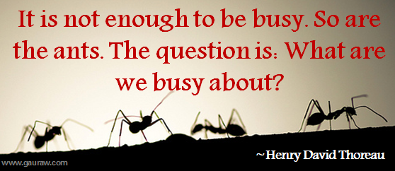 It-Is-Not-Enough-To-Be-Busy-So-Are-The-Ants